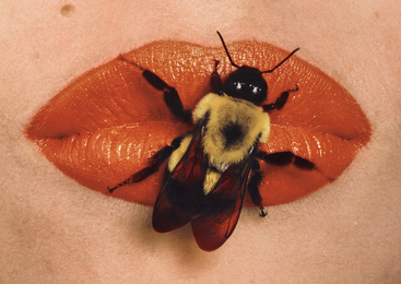 Irving Penn, 'Bee on Lips, New York,' 1995, Phillips: Photographs