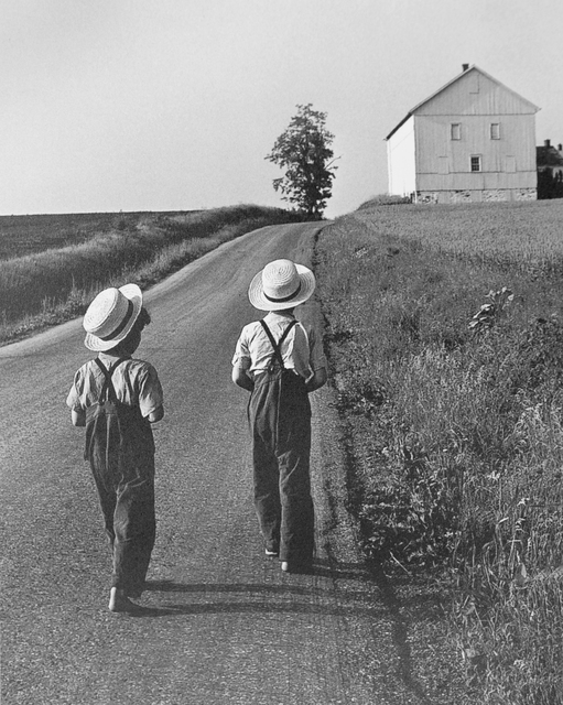George Tice, 'Two Amish Boys, Lancaster, PA', 1961, Photography, Silver Gelatin, Gallery 270