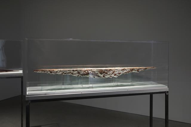 , 'L/S Ship (Silicate Sea),' 2019, Anglim Gilbert Gallery