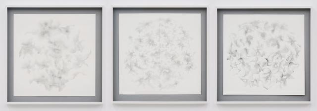 , 'C Drawings,' 2009, Galerija Gregor Podnar