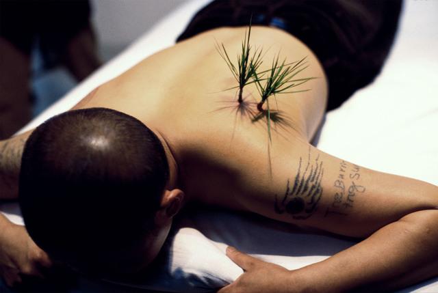 Yang Zhichao, 'Planting Grass', 2000, 10 Chancery Lane Gallery