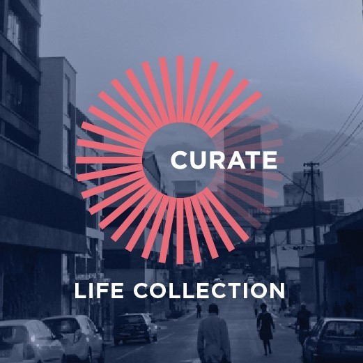 Calling all Curators. We want you to curate the Life Collection at MOAD.