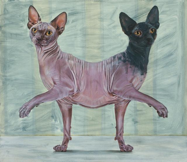 Yael Caffrey, 'Parapagus Cat II', 2015, IAILA