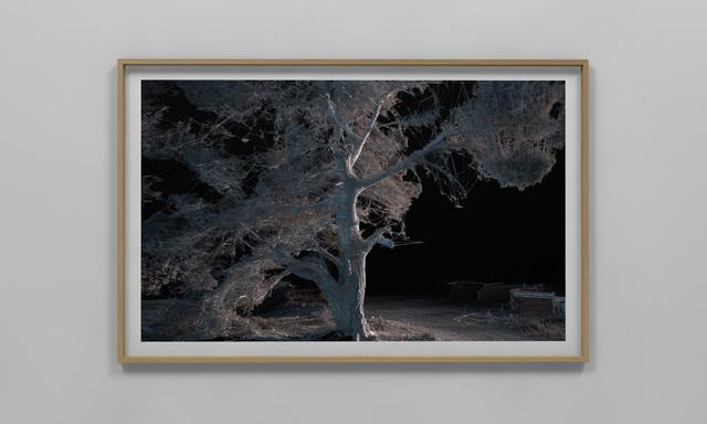 Quayola, 'Pleasant Places #S005.007', 2015, bitforms gallery