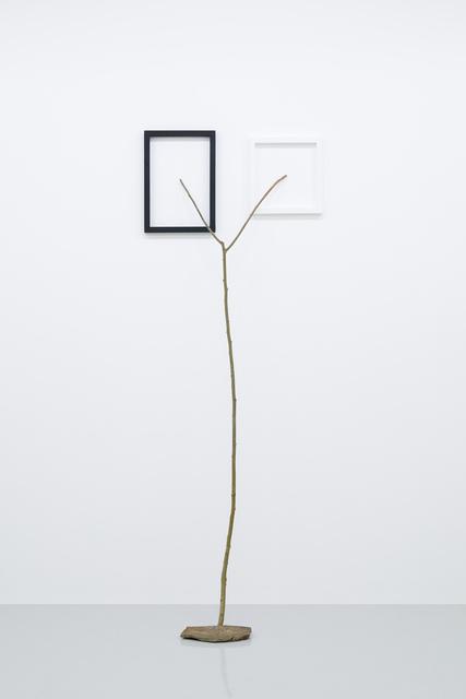 , 'Latent Depths,' 2018, Tomio Koyama Gallery