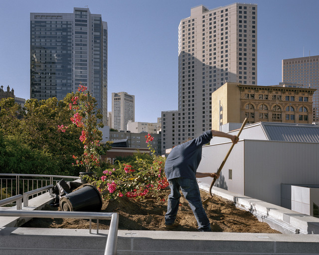 , 'Planting Bougainvillea, Yerba Buena Gardens, 2013 from SoMA Now (2011 - ongoing),' 2013, EUQINOM projects
