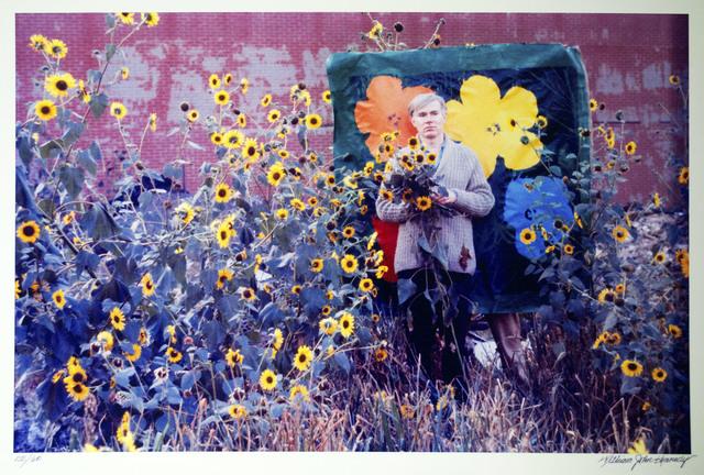 William John Kennedy, 'Warhol Flowers IX ', 1964, William John Kennedy Collection