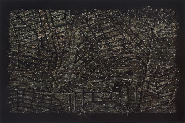 , 'Garden Carpet: Johannesburg [5],' 2013, Goodman Gallery