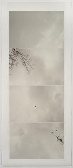 , 'gravity of memory,' 2016, Lisa Sette Gallery