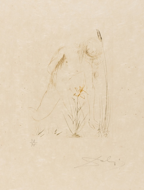 Salvador Dalí, 'Narcisse (from Quinze Gravures) (M&L 284b; Field 68-4-B)', 1968, Print, Etching printed in colours, Forum Auctions