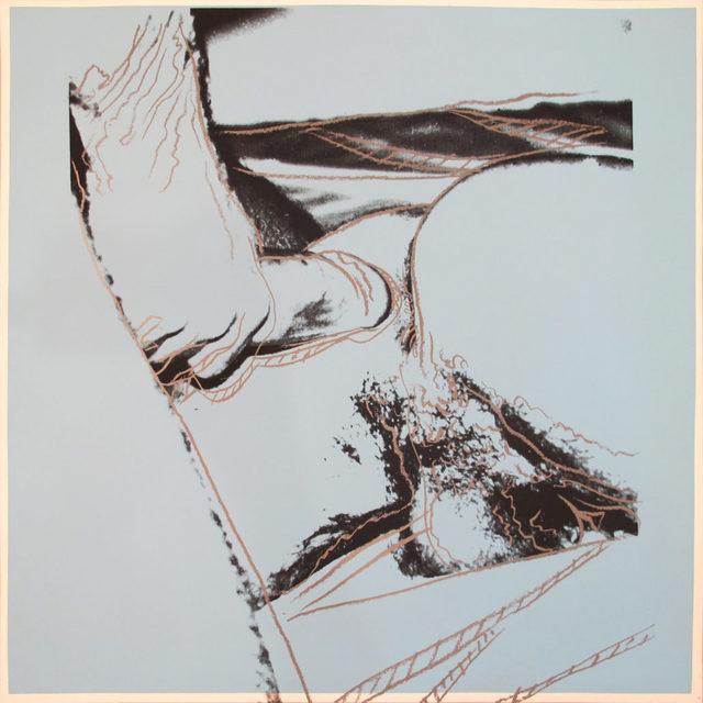 Andy Warhol, 'Sex Parts [II.172]', 1978, John Wolf Art Advisory & Brokerage