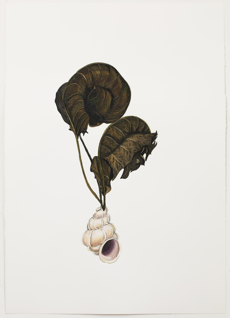 , 'Untitled,' 2015, Casa Triângulo