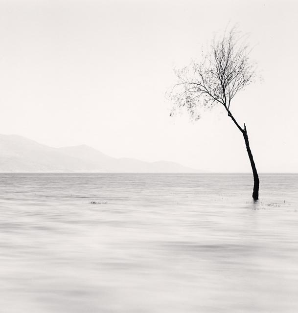, 'Erhai Lake, Study 5, Yunnan,' 2013, Robert Mann Gallery