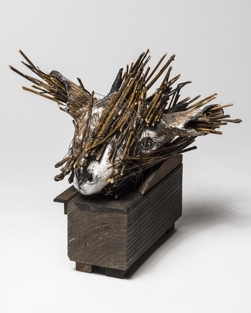 Elizabeth Jordan, 'Goat Head sculpture in Wood box: 'Jersey Devil II'', 2016, Ivy Brown Gallery