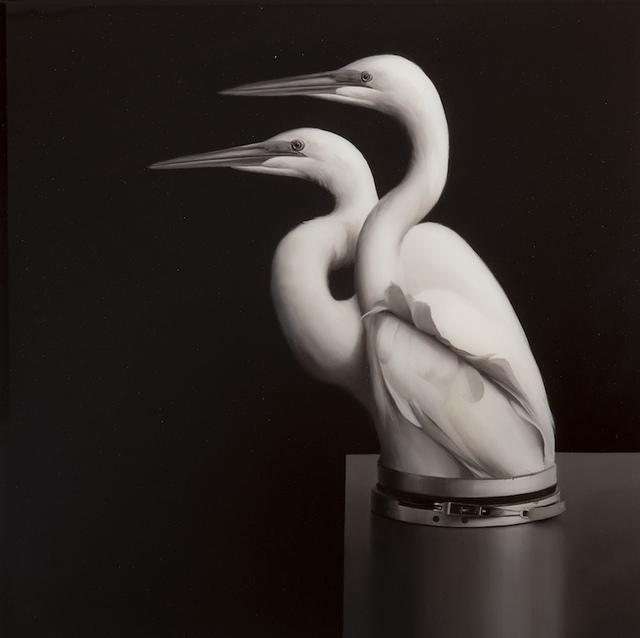 , 'Egrets with Pressure Seal,' 2018, Sullivan+Strumpf