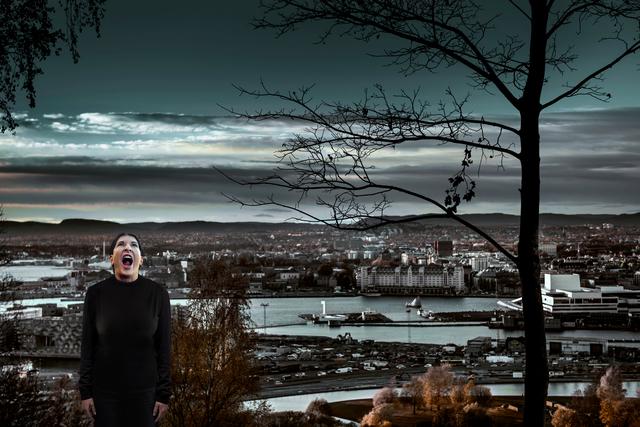 , 'The Scream,' 2013, Galerie Krinzinger