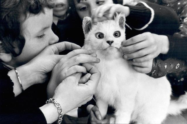 , 'School for the Young Blind, Vertou, France,' 1981, L. Parker Stephenson Photographs