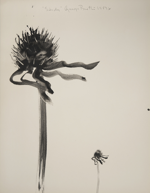 , 'Study (Weeds),' 1989, Imlay Gallery