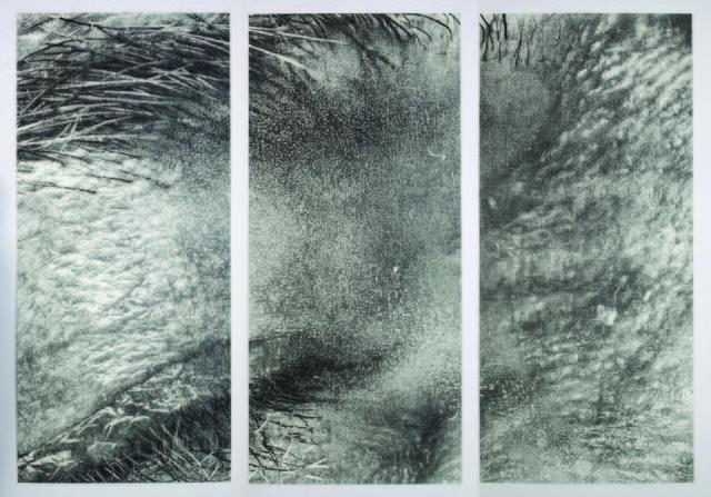 , 'Crop1aAsideEyeEA,' 2009, Garis & Hahn