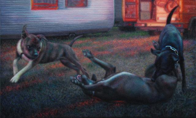 , 'Between wolves and dogs – Czech Republic,' 2016, Eva Hober