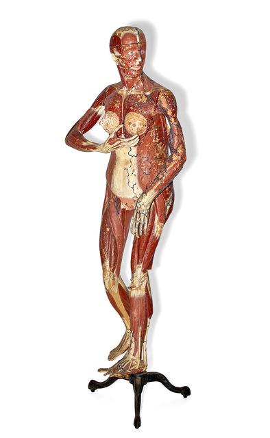 Louis Thomas Jerome Auzoux, 'Female Anatomical Model', Doyle