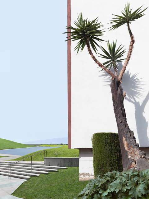 , 'Landscape with Tree and Lawn,' 2016, Robert Koch Gallery