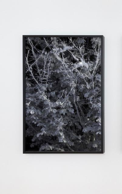 Quayola, '#L1_004_102, 2018', 2018, Marignana Arte