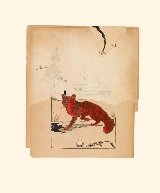 , 'Red Fox 7/14/15,' 2015, Miller Yezerski Gallery