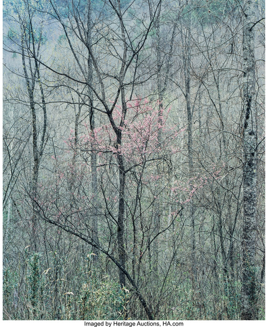 Eliot Porter, 'Intimate Landscapes (four photographs)', 1957-1977, Photography, Dye-transfer, 1978, Heritage Auctions