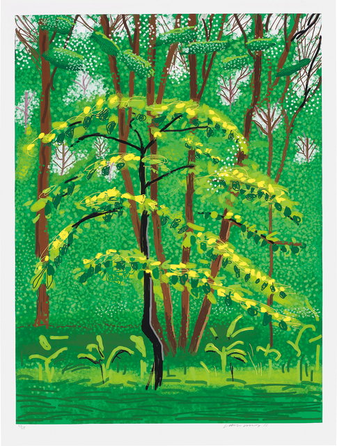 David Hockney, '19 May, from The Arrival of Spring in Woldgate, East Yorkshire in 2011 (twenty eleven)', 2011, Phillips