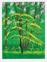 David Hockney, '19 May, from The Arrival of Spring in Woldgate, East Yorkshire in 2011 (twenty eleven),' 2011, Phillips: Evening and Day Editions