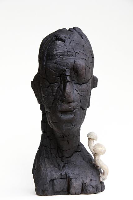 , 'Ungeladen,' 2011, Terreno Baldío