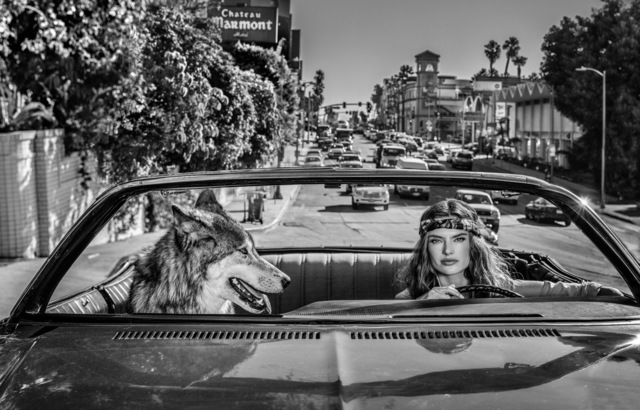David Yarrow, 'Chateau Marmont', 2019, Photography, Archival Pigment Print, Maddox Gallery