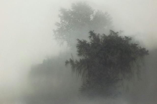 , 'Dark Island,' 2013, Kukje Gallery