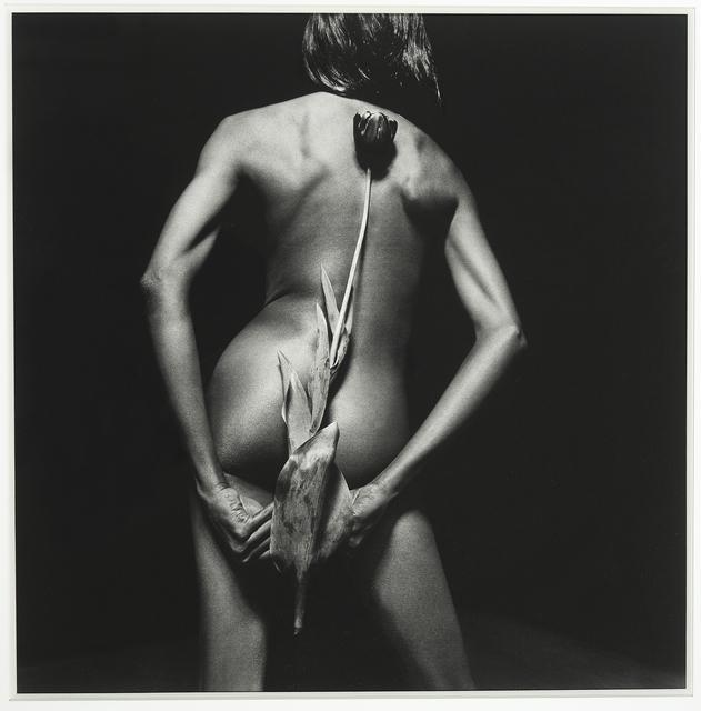 , 'Polvo de Plata,' 2008, Galerie Sophie Scheidecker