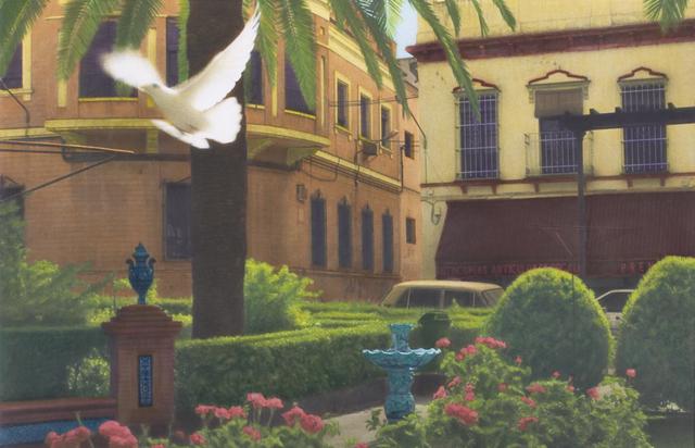 , 'Dove, Spain,' , Pucker Gallery