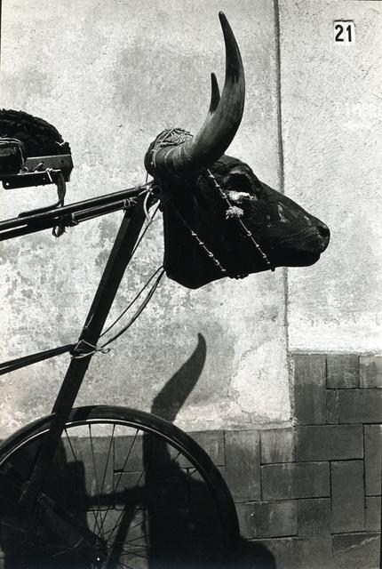 , 'Bicicleta con cabeza de toro,' , Galería OMR