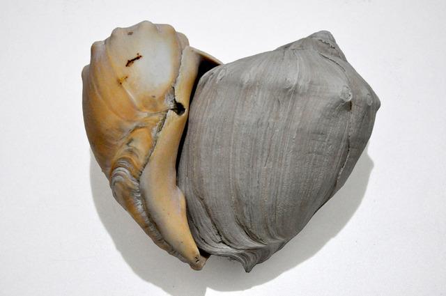 , 'Escuta da escuta (A surdez de quem ouve cantos),' 2013, Central Galeria de Arte