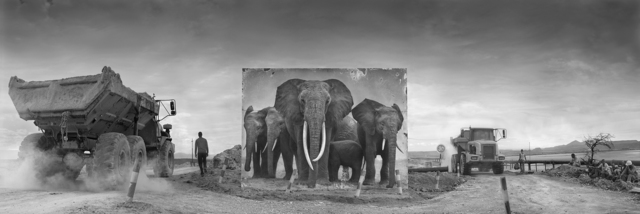 Nick Brandt, 'Road Junction with Qumquat & Family', 2014, Fahey/Klein Gallery