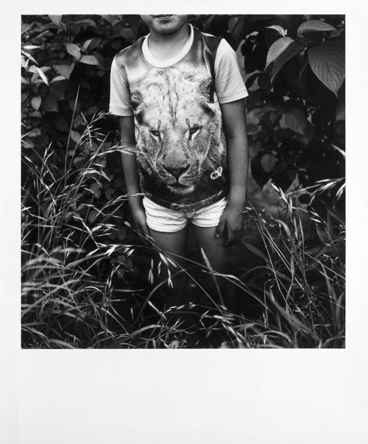 Issei Suda, 'Lion', 1970 ca., Il Ponte