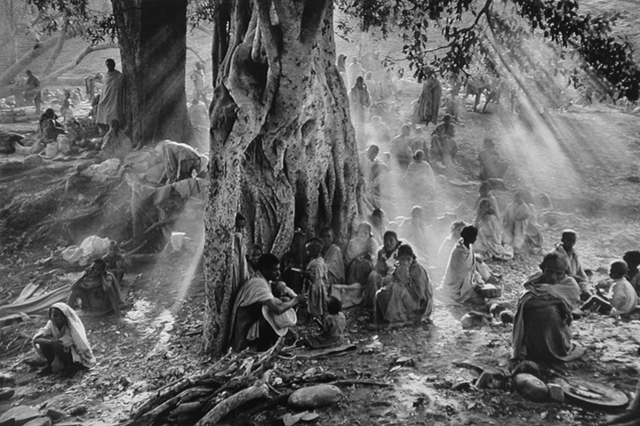 , 'Refugees Hiding Under Trees to Avoid Government Airplane Surveillance, Tigray, Ethiopia,' 1986, Yancey Richardson Gallery