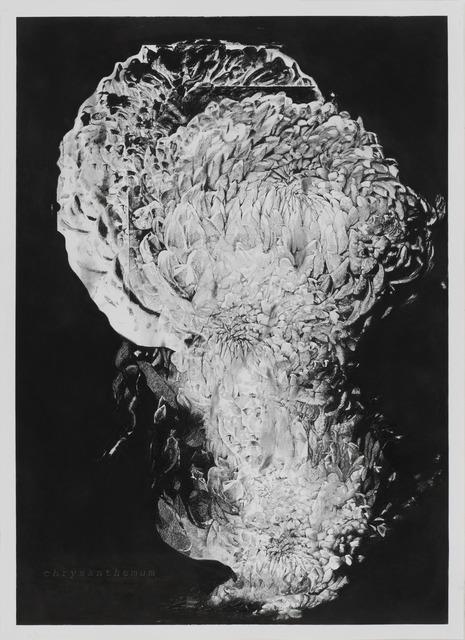 , 'Chrysanthemum III (de la série Hanabi),' 2013, MLF | MARIE-LAURE FLEISCH
