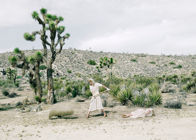 , 'The Desert,' 2015, THE LITTLE BLACK GALLERY