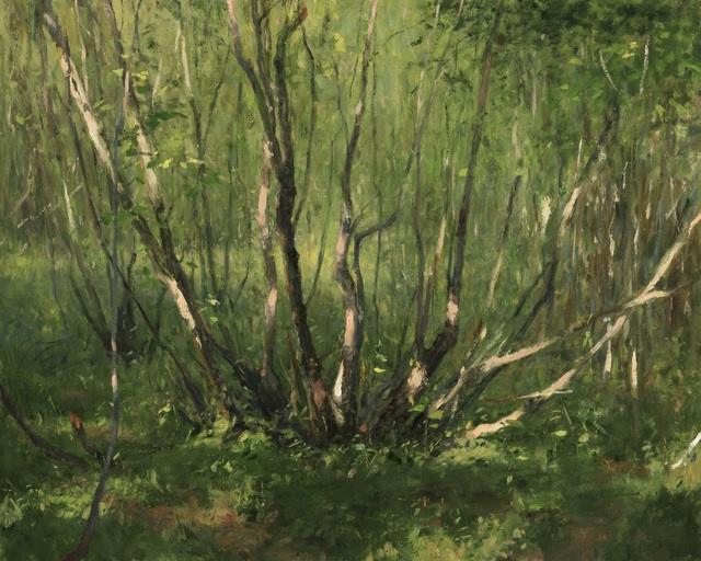 , 'Thicket,' , Helena Fox Fine Art