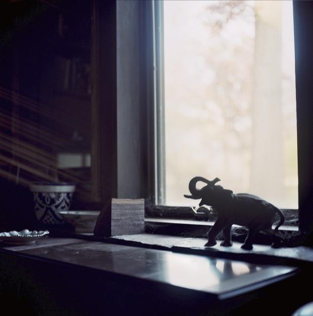 , 'Elephant,' 2016, Soho Photo Gallery