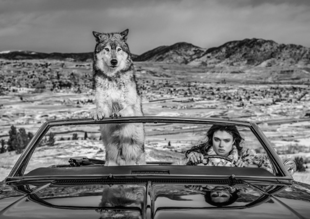David Yarrow, 'The Richest Hill in The World', 2020, Photography, Archival Pigment Print, Hilton Asmus
