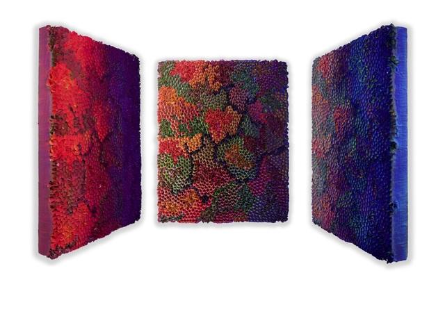 , 'Flowerbed Colorchange,' 2016, SmithDavidson Gallery