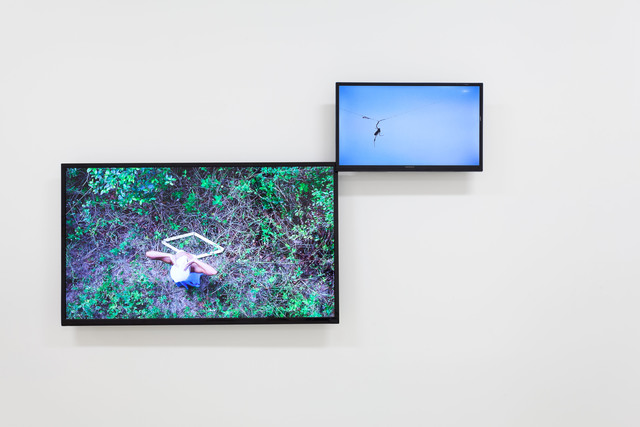 , 'Untitled (rhombus: above Lake Apopka North Shore),' 2017, Emerson Dorsch