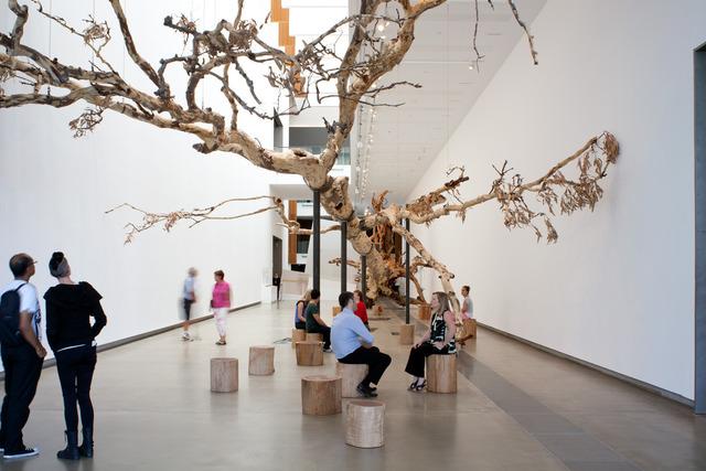, 'Eucalyptus,' 2013, Cai Studio