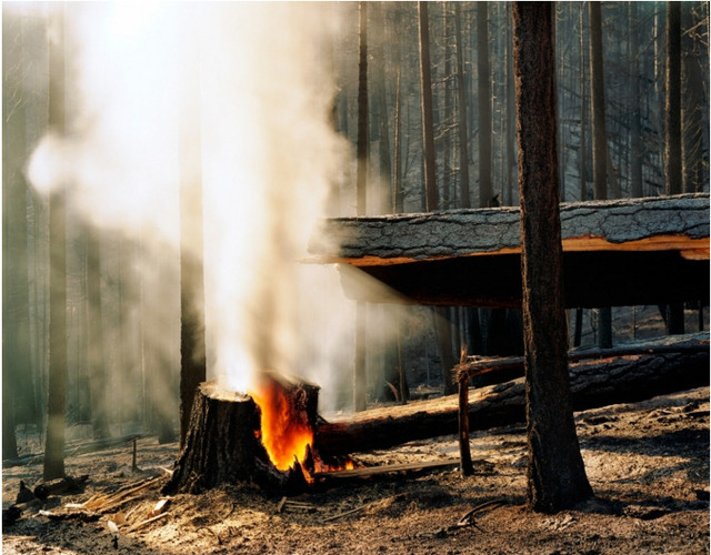 , 'Wildfire #22, Moonlight Fire, Plumas National Forest, CA,' 2003-2006, Front Room Gallery
